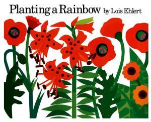 planting rainbow