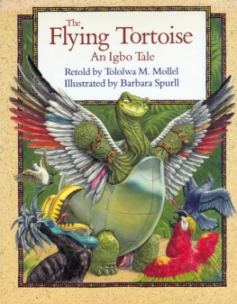 FlyingTortoise