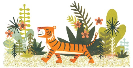 Mr.Tiger38